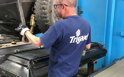 Trigard Mold Worker_web
